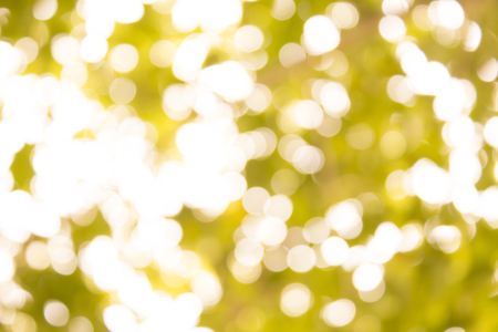 Natural green bokeh lights abstract background blurred texture warm tone Stock Photo