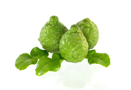 rough: Kaffir Lime fruits and leaf isolated on white