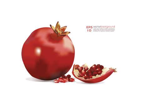 pomegranate juice: Pomegranate Vector Illustration
