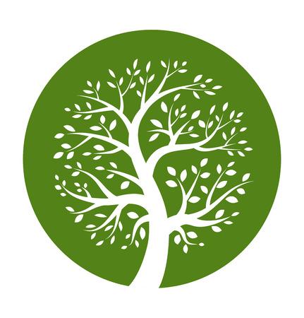 Blanco icono del árbol en la ronda verde