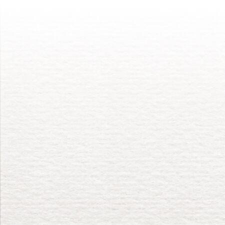 Gradación realista textura Libro Blanco.