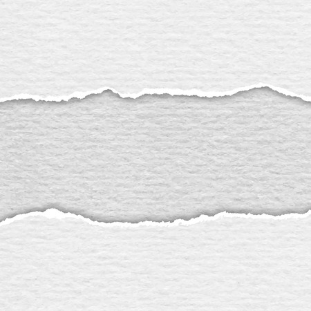 white paper texture: Realistic lacerated white paper texture