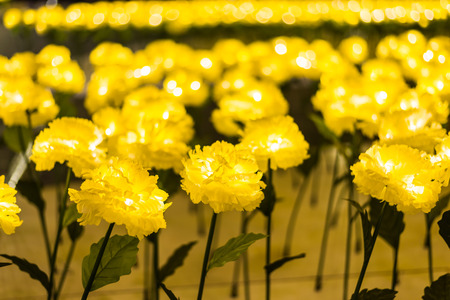 Led lights of yellow marigold fabric handmade flower garden decorated for celebrating Christmas season and new year 2017 shining at night time, selective focus