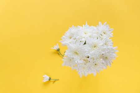 White Chrysanthemum flowers in ceramic cup on light yellow background with copy space for text, logo, wordings insertion or decoration, innocent white love concept for  wedding, mother day, valentines