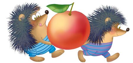 two hedgehogs bear big apple a white background Stock Photo