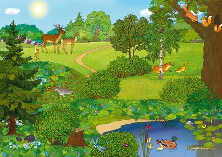여름에 동물과 숲 풍경 스톡 콘텐츠