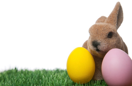 Easter bunny with colorful eggs on green grass photo