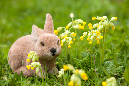 Easter bunny sitting between yellow flowers photo