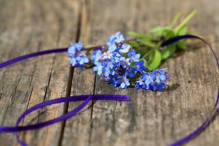forget: Small bouquet of Forget me not flowers