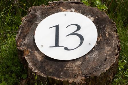 thirteen: Number thirteen on tree trunk Stock Photo