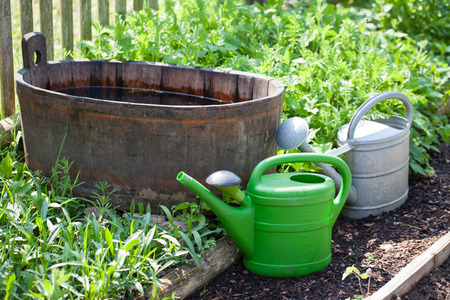 Garden stilllife with watering cans photo