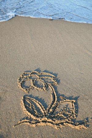 浜辺の花砂絵