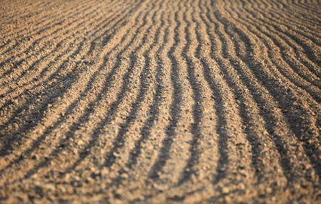 ploughed field: Agricultural ploughed field and soil in spring