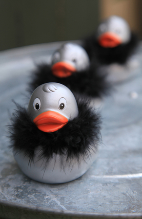 Row of silver rubber ducks with black fur collar
