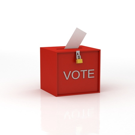 local election: voting