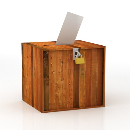 local council election: voting