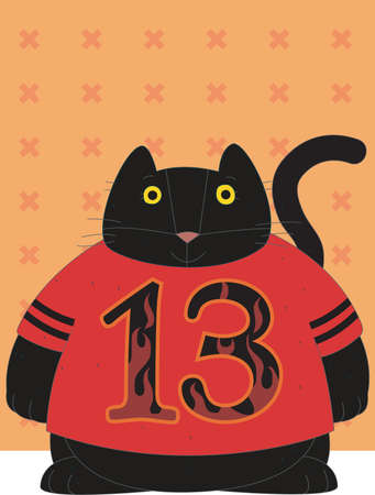 A black cat is wearing a red t shirt with 13 number is on with orange background and stars