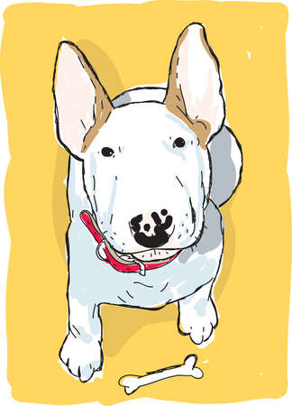 An illustration of a English bull terrier with a bone in front illustration