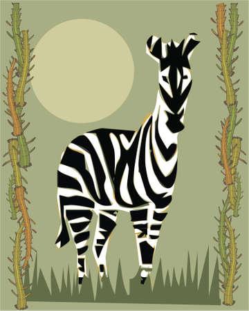 illustrative: Zebra illustrative