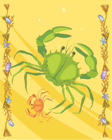 Crabs in a decorative illustration illustration