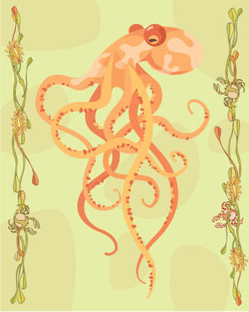 Octopus in a decorative illustration illustration