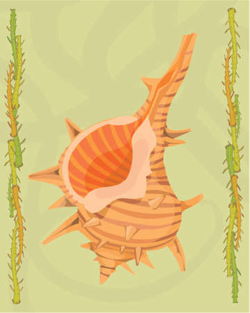 Shellfish in a decorative illustration illustration