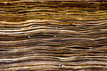 brownish: Brownish pages of old ancient book