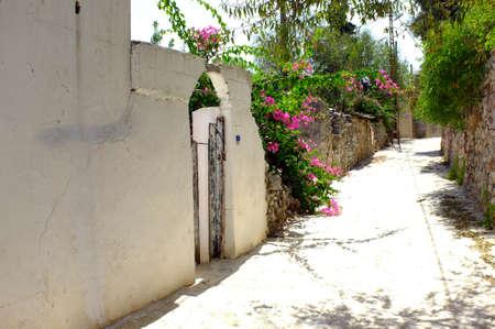 quite: Quite cute road in a village