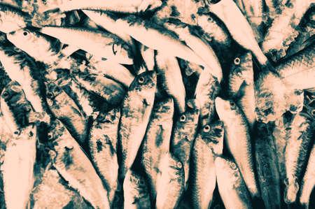 Gruppe von toten Fischen mit Sepia-Effekt Standard-Bild - 34059560