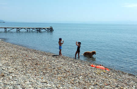 children play: Children and their dog play on beach Editorial