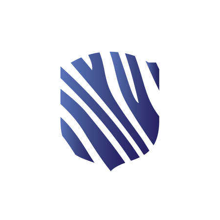 Colorful shield vector. Shield Icon Picture,  vector Flat, shield App and Web symbol.