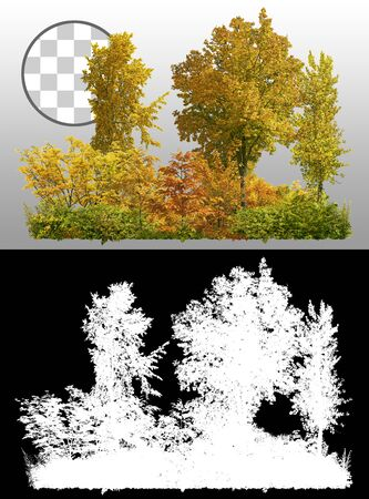Cutout tree line. Trees in fall. Row of trees and shrubs in autumn isolated on transparent background through an alpha channel. Forestscape. High quality clipping mask for professional composition. Reklamní fotografie