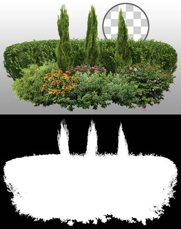 Cut out landscape design. Hedge plants and flower bed. Flower hedge isolated on a transparent background via an alpha channel. Garden design. Flowering shrub and green plants for landscaping. Decorative shrub and boxwood hedge. High quality cutout for professional composition. Archivio Fotografico
