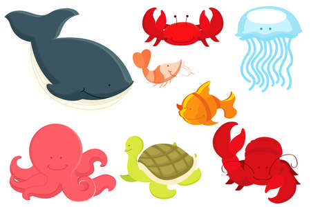 A vector illustration of marine animals cartoon Çizim