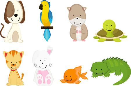 A vector illustration of pets cartoon