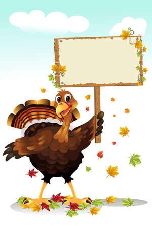 pavo: Una ilustraci�n vectorial de una Turqu�a sosteniendo un cartel en blanco Vectores