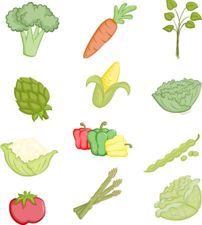 콜리 플라워: 야채 아이콘의 다양한 그림 일러스트