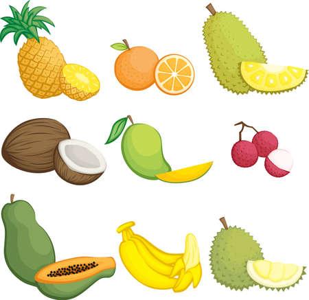 mangoes: illustration of tropical fruits icons Illustration