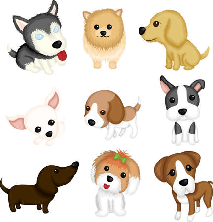 cute dogs: A vector illustration of different dog breeds