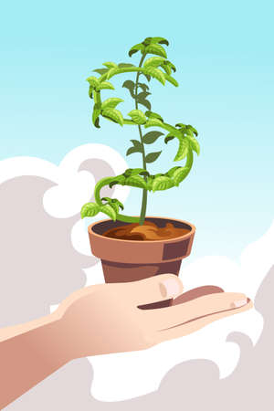 A vector illustration of a hand holding a plant shaped like a dollar sign Illustration