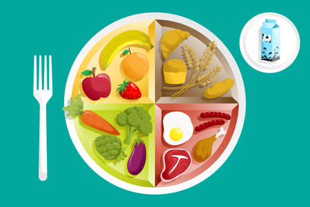A  illustration of different food groups on a plate