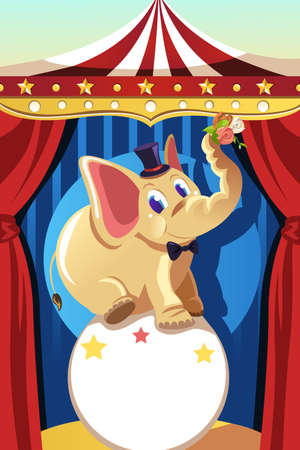 A vector illustration of an elephant standing on a ball in a circus  Illustration