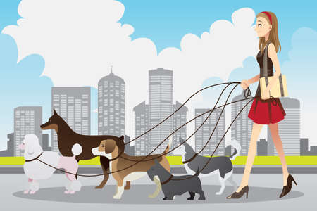 A vector illustration of a beautiful woman walking many dogs in the city Çizim