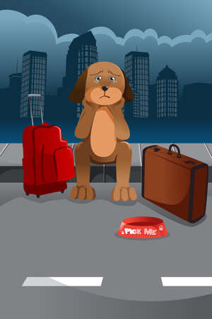A vector illustration of sad dog waiting for someone to adopt him Vectores