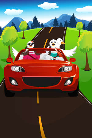 A vector illustration of group of swans going on a road trip Stock Vector - 21728488