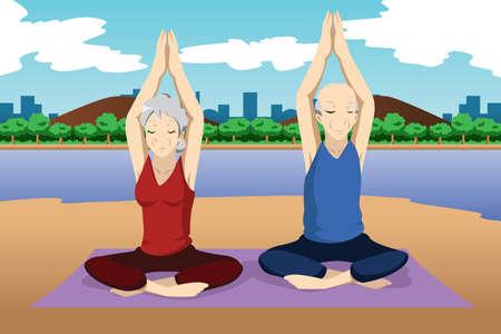 personas mayores: Una ilustración vectorial de par que hace ejercicios de yoga de alto nivel Vectores