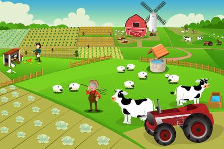 felder: Illustration von Leben auf dem Bauernhof von oben gesehen