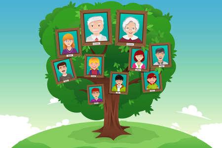 árbol genealógico: Una ilustración vectorial de concepto de árbol de familia