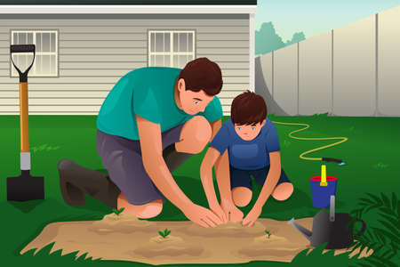 A vector illustration of father and son working on a flower garden in their backyard Иллюстрация