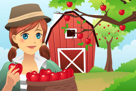 A vector illustration of woman carrying a basket of fruit after harvesting from the farm Vector